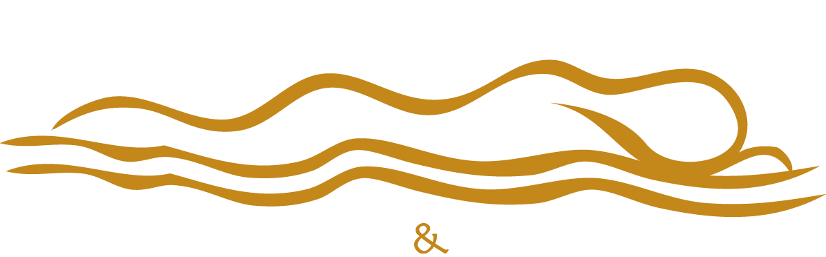 logo-design-noosa